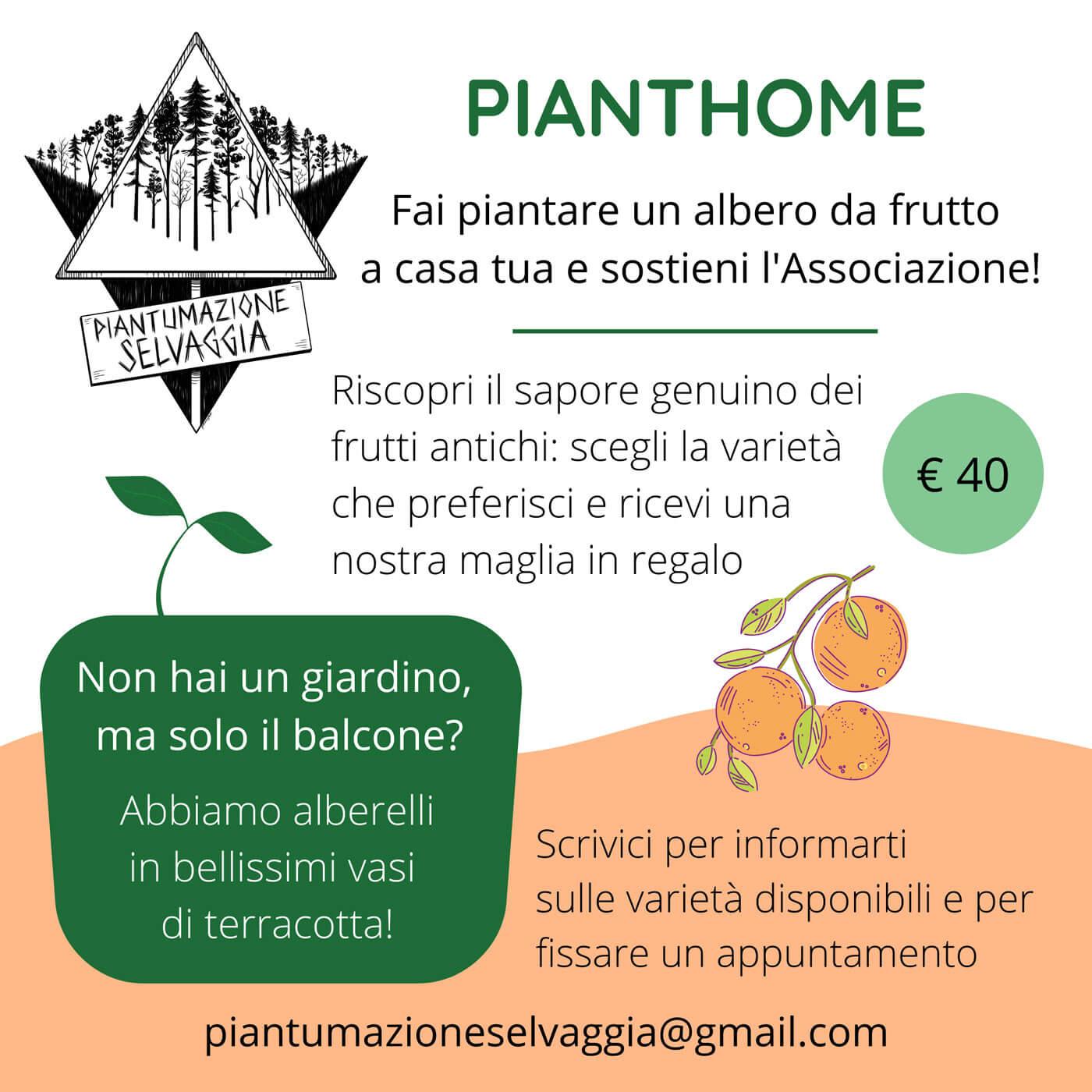 PIANTHOME!